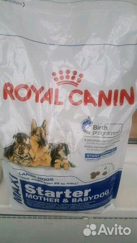Корм royal canin israel address