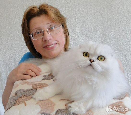 Зоопсихолог - специалист по воспитанию кошек